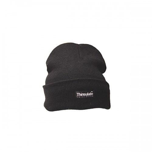 ff90b63d7 Thinsulate Beanie Hat