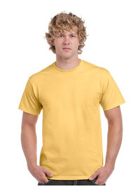 Gildan 5000,Heavy Cotton Coloured T Shirt