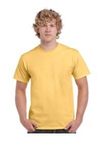 Gildan 5000,Heavy Cotton Coloured T Shirt